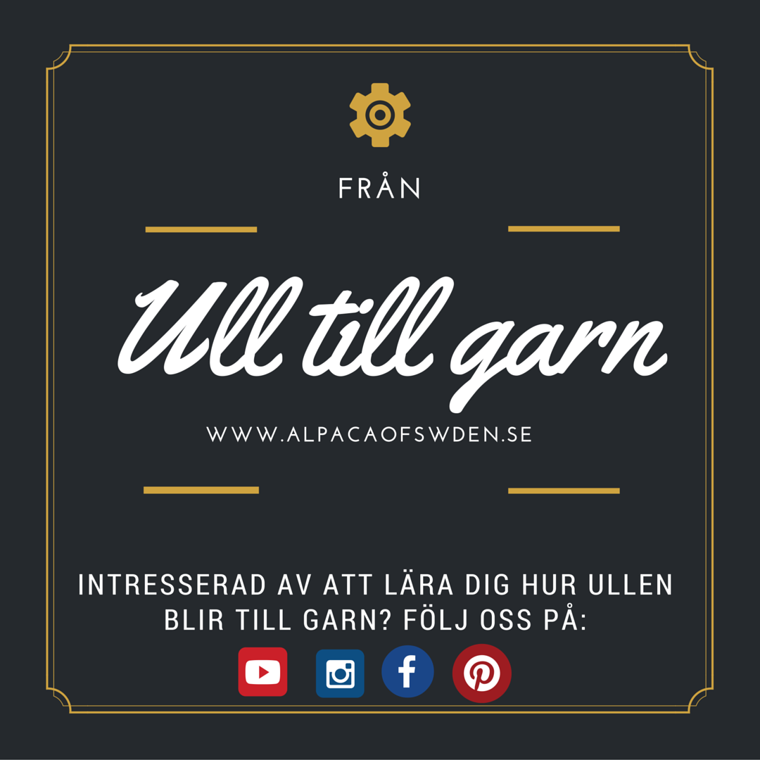 Följ oss på facebook, instagram, pinterest och youtube